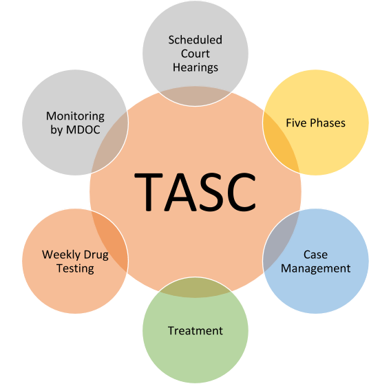 Treatment and Support Court (TASC)